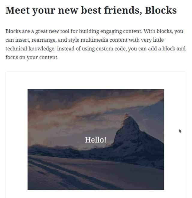 Gutenberg Blocks | Gecko Design